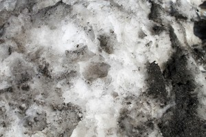 dirty-snow-background-01