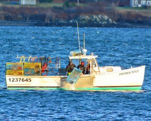 Maine commercial fishing